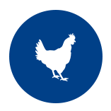 PoultryIcon